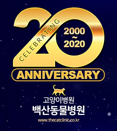20주년팝업.jpg