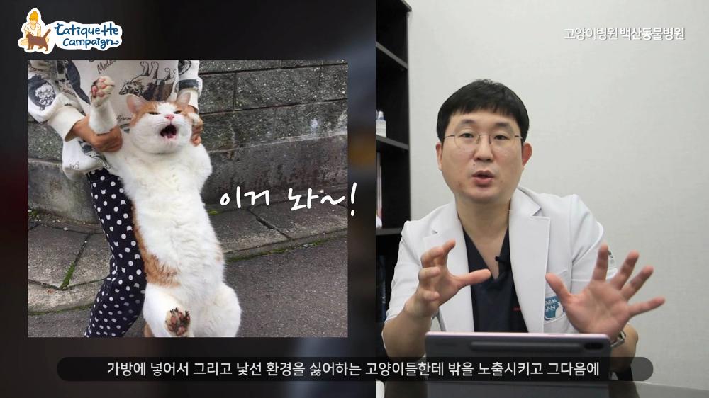 2020캣티켓캠페인_최종제작.mp4_000273106.png
