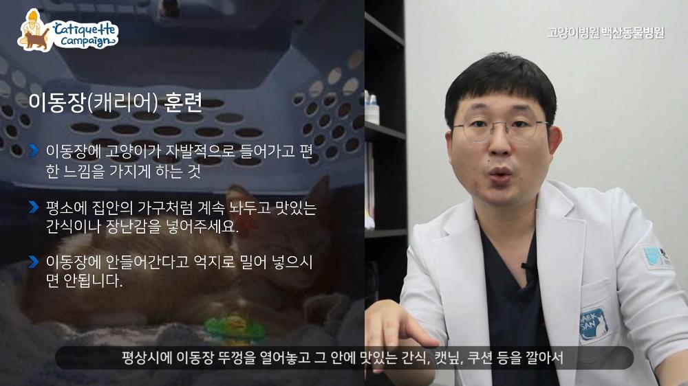 2020캣티켓캠페인_최종제작.mp4_000445278.png